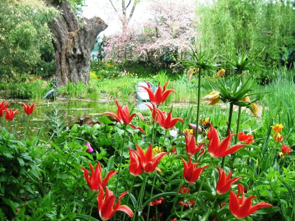 Rote Blumen und verwunschene Landschaft