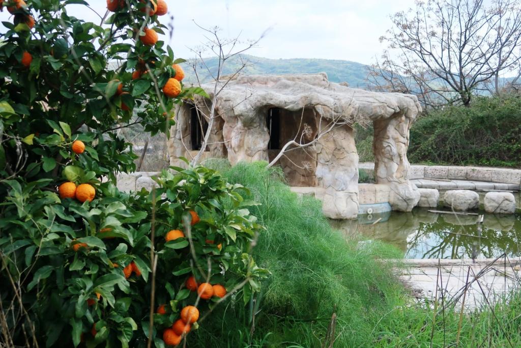 orangenbaum vor säulengebäude und teich zeigt entspannung hilftburnout vorbeugen
